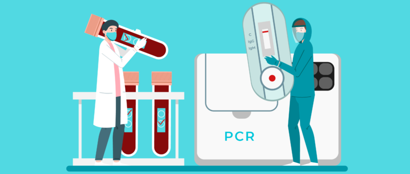 How important is to translate the results of the PCR test?